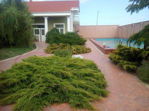 На берегу Каламитского залива в элитном пригороде г. Евпатория продается усадьба Цена 55000 000 руб. №18802